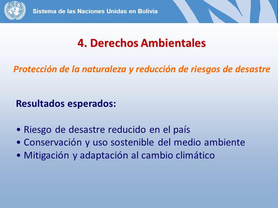 Protección de la naturaleza y reducción de riesgos de desastre
