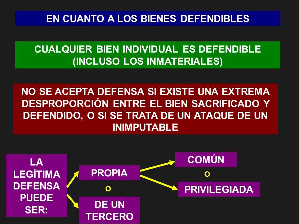 EN CUANTO A LOS BIENES DEFENDIBLES