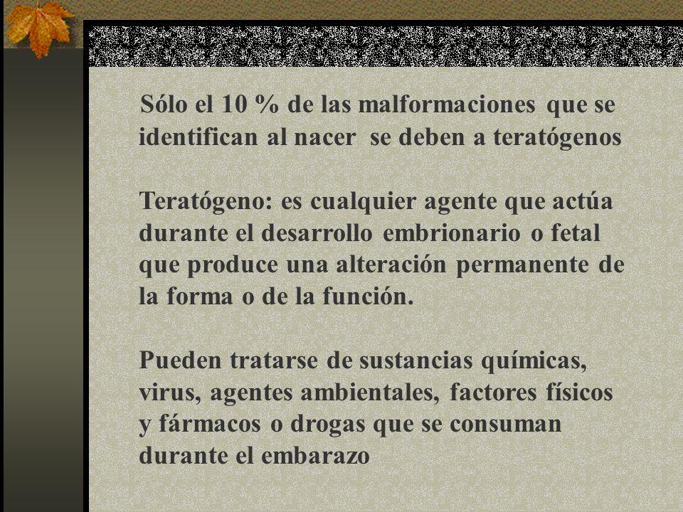 Sólo el 10 % de las malformaciones que se