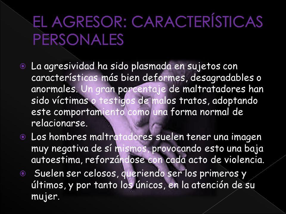 EL AGRESOR: CARACTERÍSTICAS PERSONALES