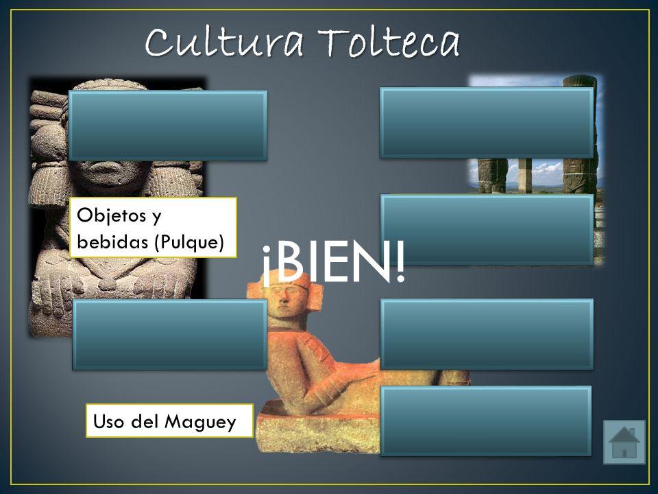 ¡BIEN! Cultura Tolteca Ubicación Algunas esculturas Tula Hidalgo