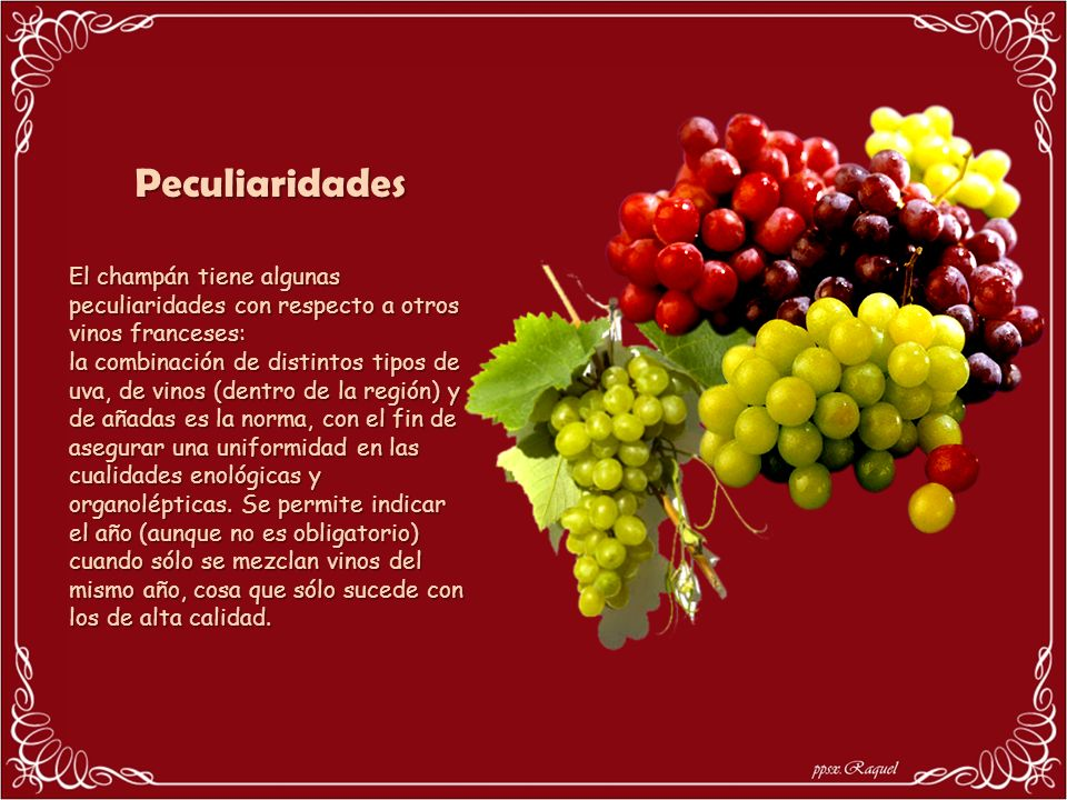 PeculiaridadesEl champán tiene algunas peculiaridades con respecto a otros vinos franceses: