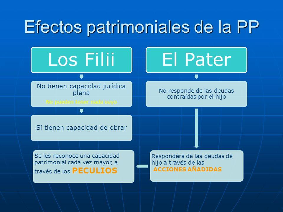 Efectos patrimoniales de la PP