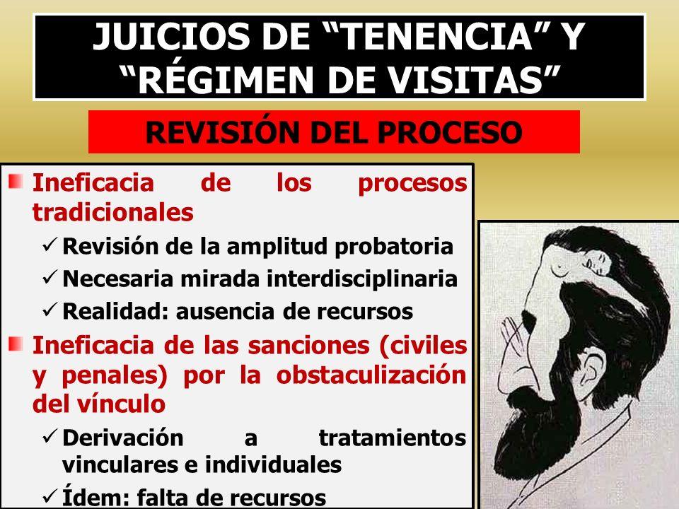 JUICIOS DE TENENCIA Y RÉGIMEN DE VISITAS