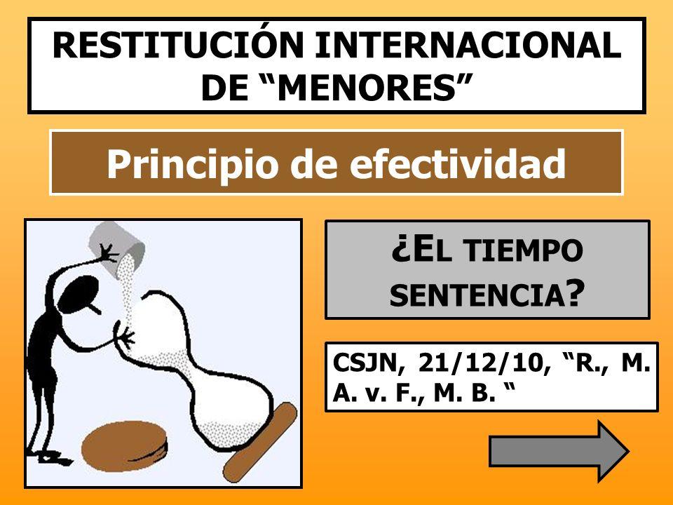 Principio de efectividad