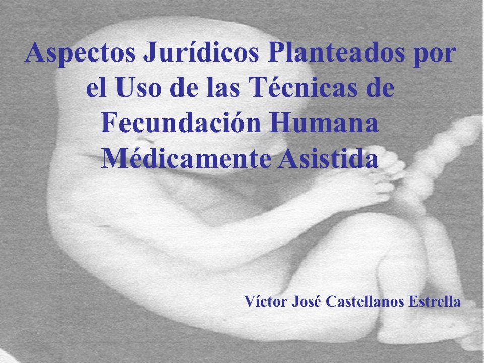 Víctor José Castellanos Estrella