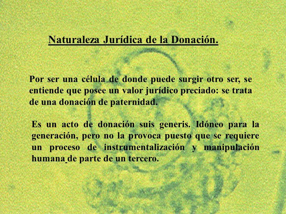 Naturaleza Jurídica de la Donación.