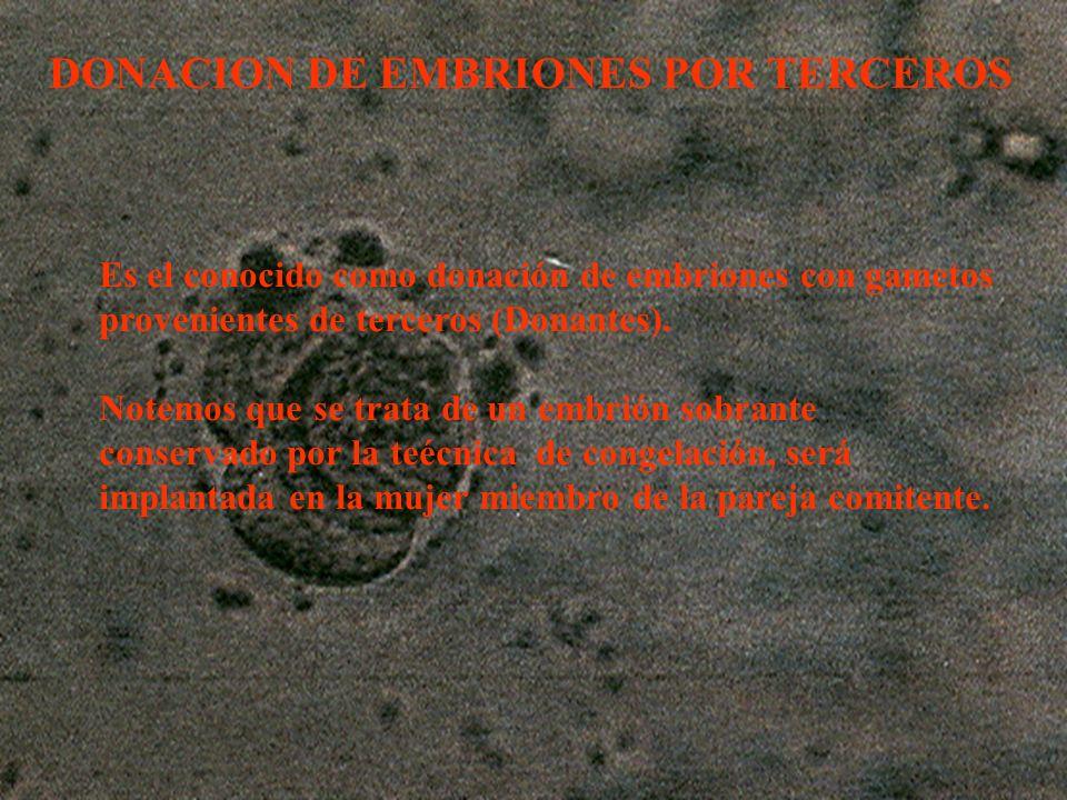 DONACION DE EMBRIONES POR TERCEROS