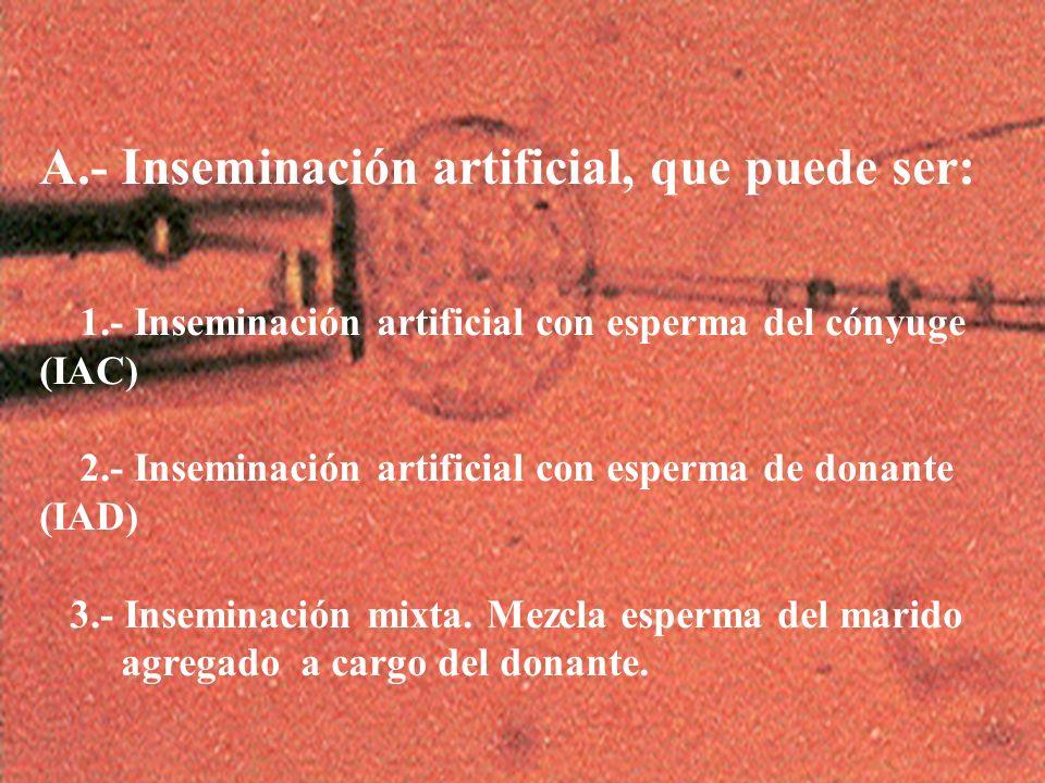 A.- Inseminación artificial, que puede ser: