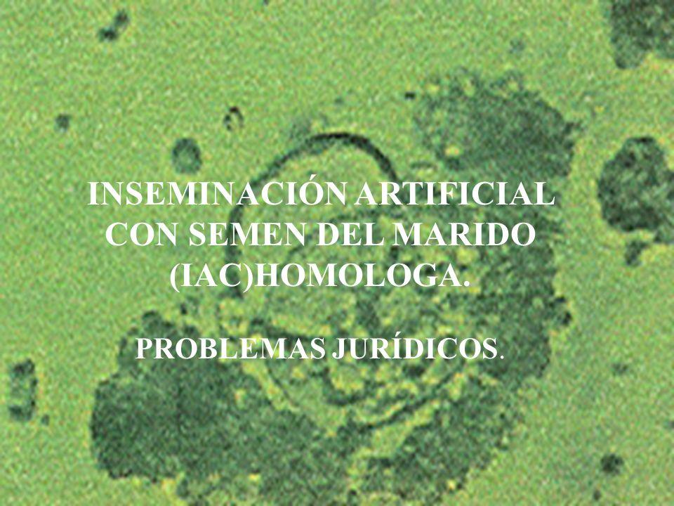 INSEMINACIÓN ARTIFICIAL CON SEMEN DEL MARIDO (IAC)HOMOLOGA.