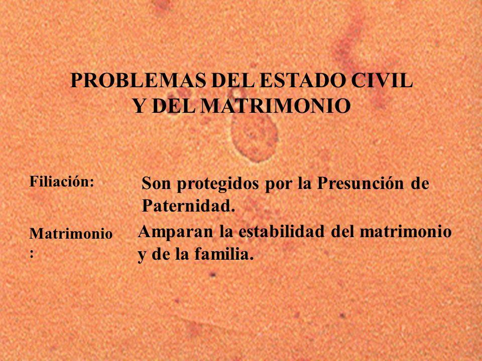 PROBLEMAS DEL ESTADO CIVIL Y DEL MATRIMONIO