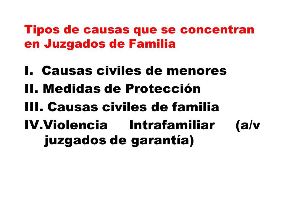 Tipos de causas que se concentran en Juzgados de Familia