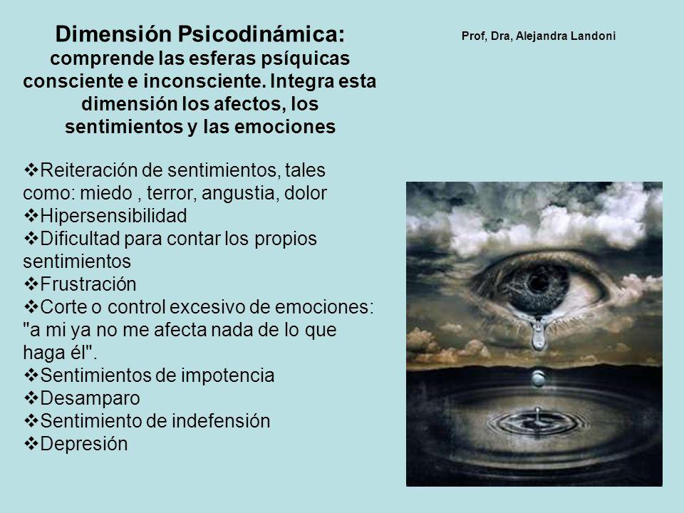 Dimensión Psicodinámica: comprende las esferas psíquicas consciente e inconsciente. Integra esta dimensión los afectos, los sentimientos y las emociones
