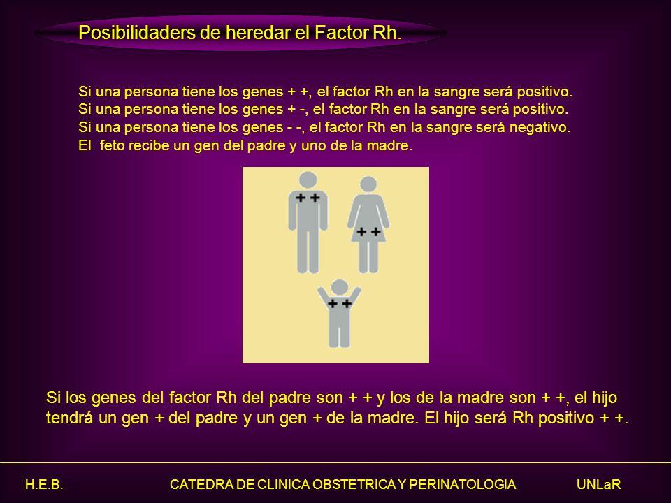 Posibilidaders de heredar el Factor Rh.