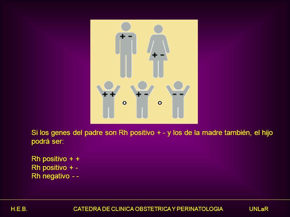 Si los genes del padre son Rh positivo + - y los de la madre también, el hijo podrá ser: Rh positivo + + Rh positivo + - Rh negativo - -
