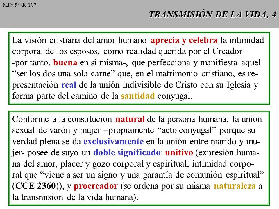 La visión cristiana del amor humano aprecia y celebra la intimidad