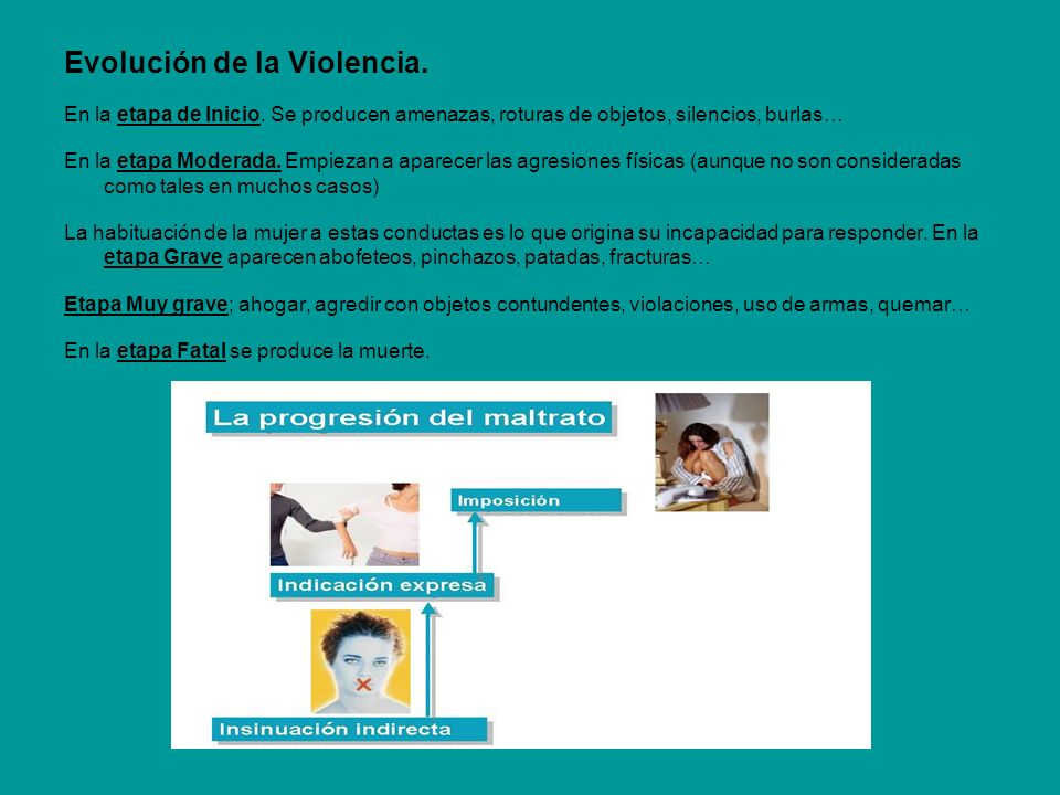 Evolución de la Violencia.