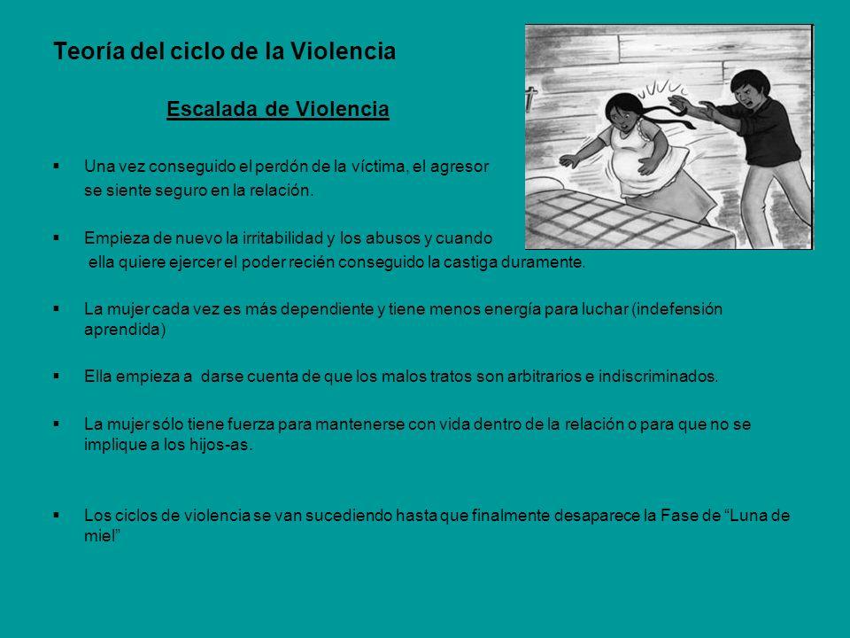 Teoría del ciclo de la Violencia