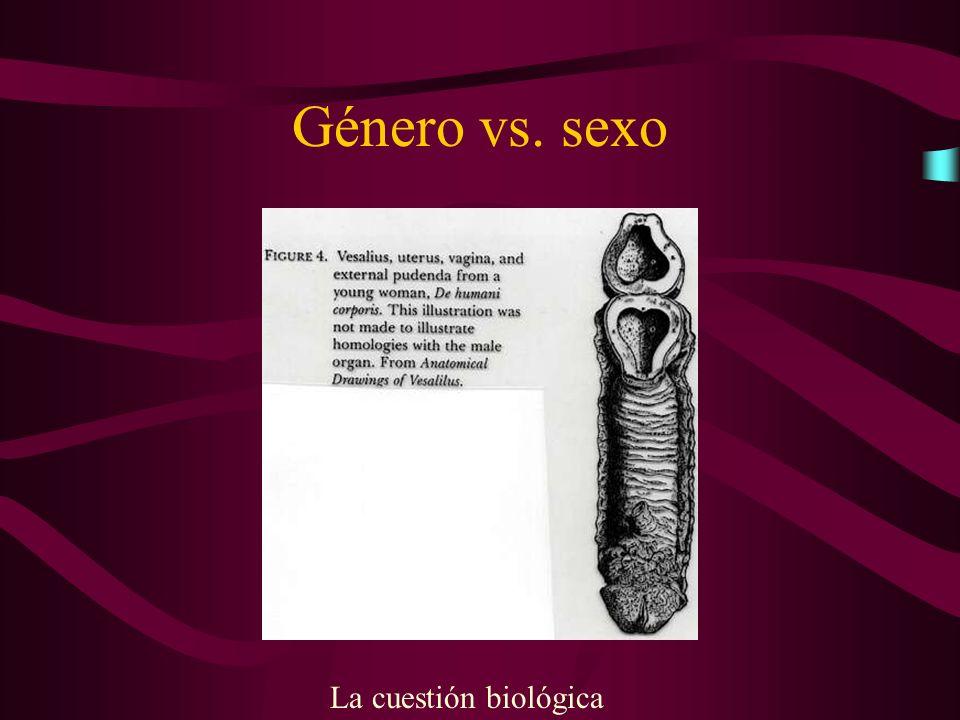 Género vs. sexo La cuestión biológica