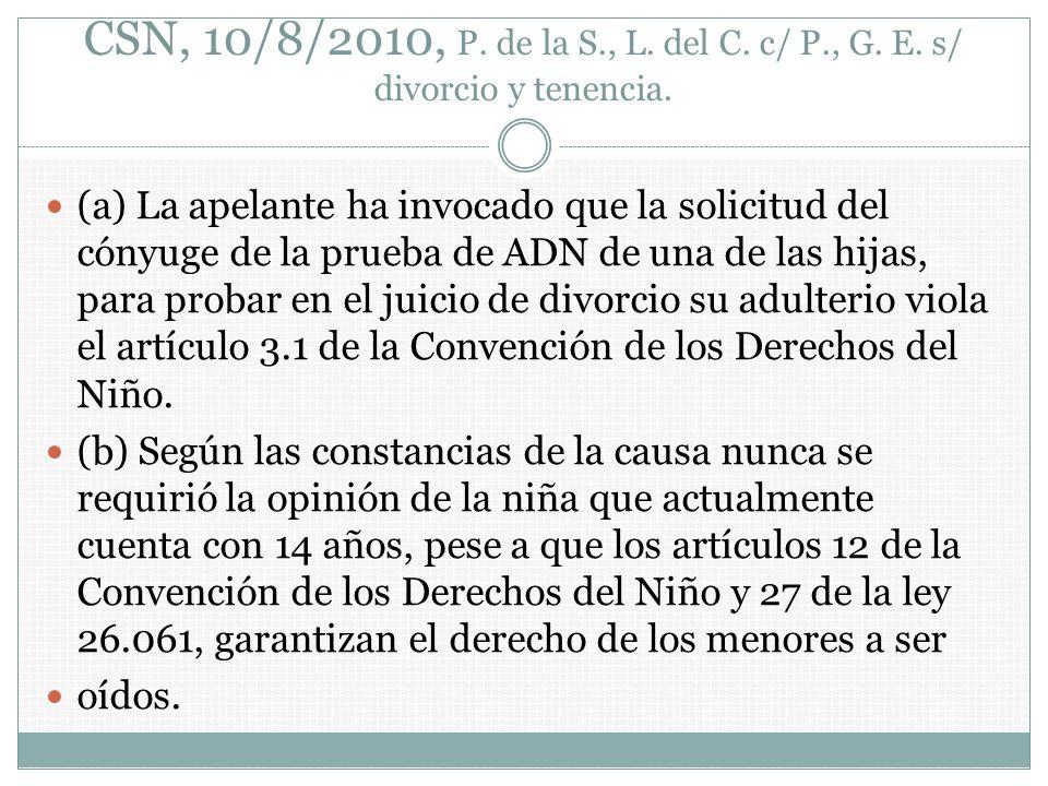 CSN, 10/8/2010, P. de la S. , L. del C. c/ P. , G. E