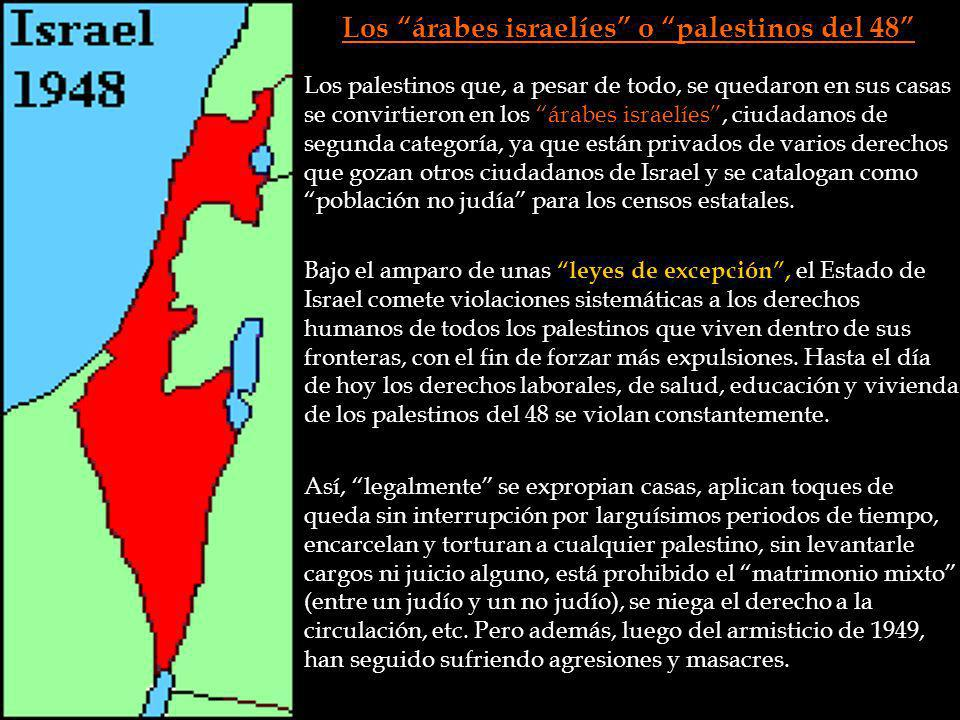Los árabes israelíes o palestinos del 48