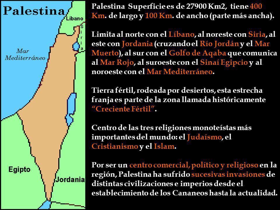 Palestina Superficie es de 27900 Km2, tiene 400 Km. de largo y 100 Km