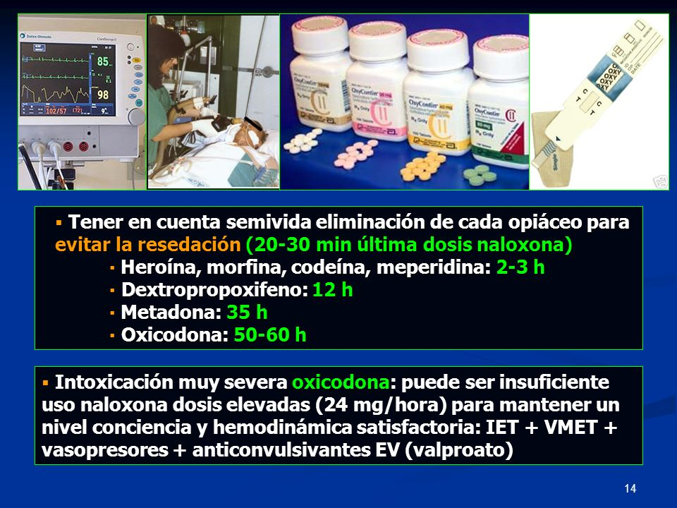 ▪ Heroína, morfina, codeína, meperidina: 2-3 h