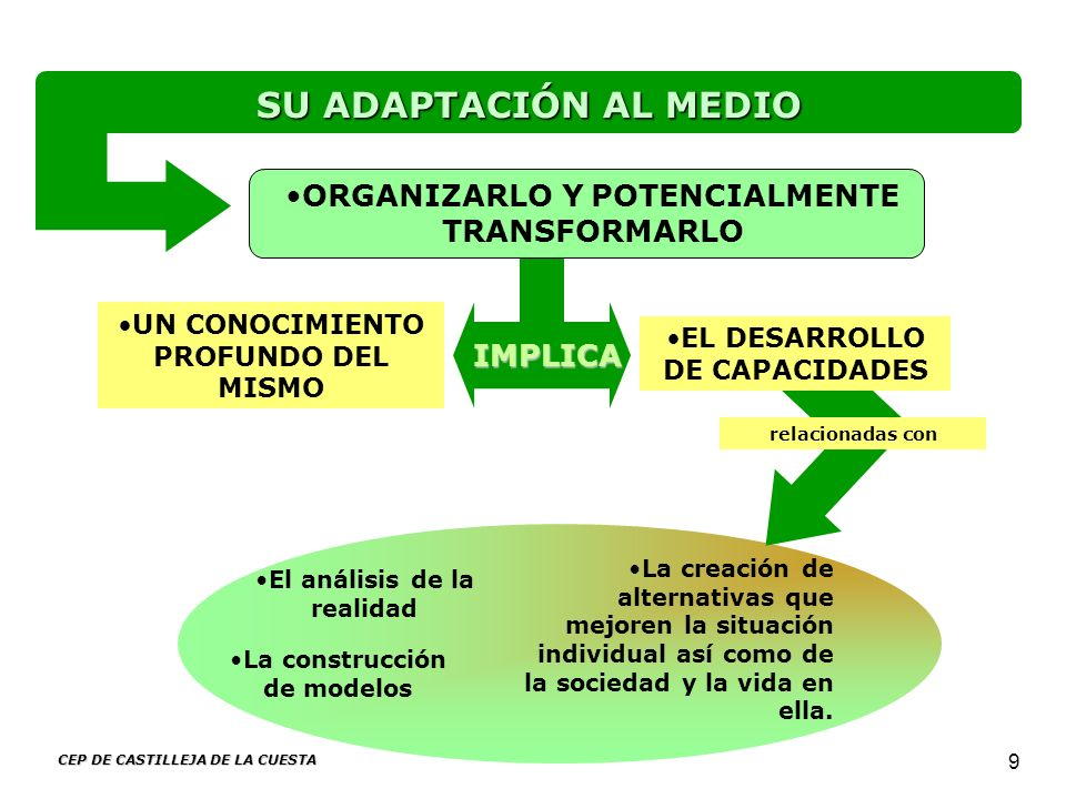 ORGANIZARLO Y POTENCIALMENTE TRANSFORMARLO El análisis de la realidad