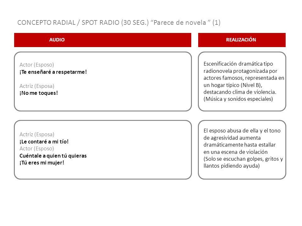CONCEPTO RADIAL / SPOT RADIO (30 SEG.) Parece de novela (1)