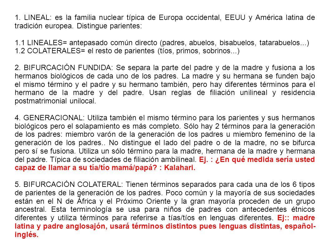 1. LINEAL: es la familia nuclear típica de Europa occidental, EEUU y América latina de tradición europea. Distingue parientes: