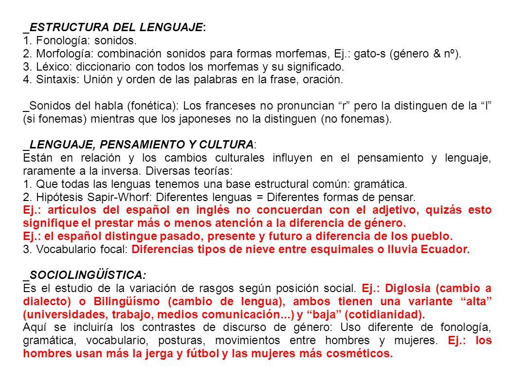 _ESTRUCTURA DEL LENGUAJE: