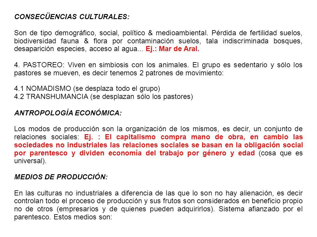 CONSECÜENCIAS CULTURALES: