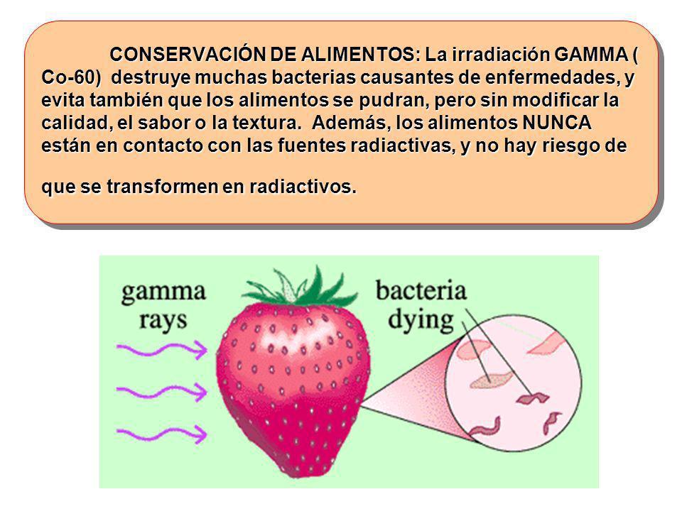 CONSERVACIÓN DE ALIMENTOS: La irradiación GAMMA ( Co-60) destruye muchas bacterias causantes de enfermedades, y evita también que los alimentos se pudran, pero sin modificar la calidad, el sabor o la textura.