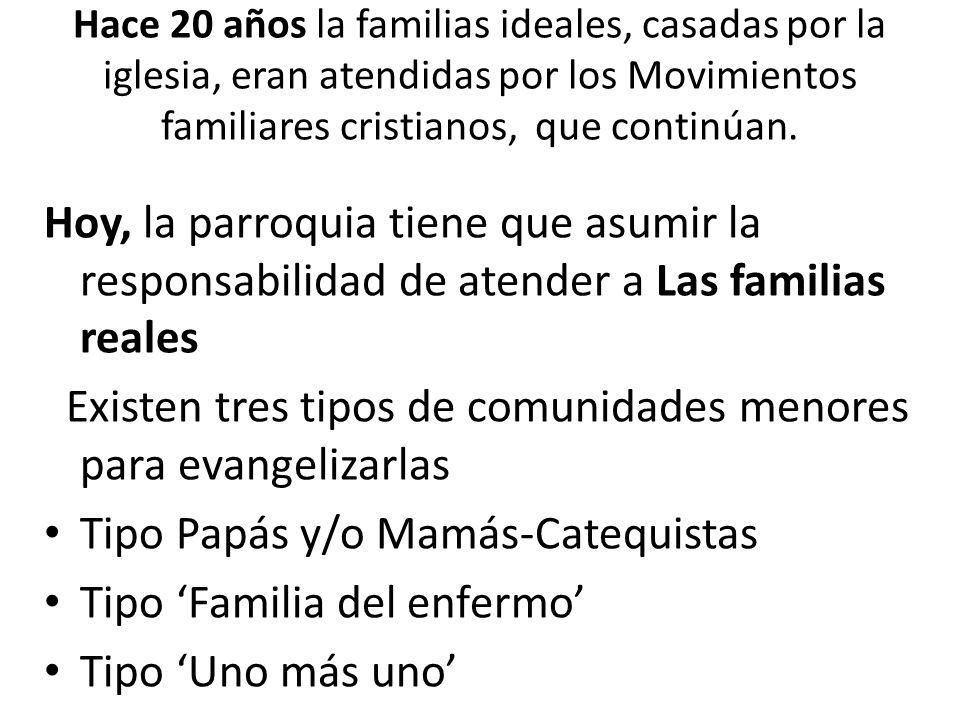 Existen tres tipos de comunidades menores para evangelizarlas