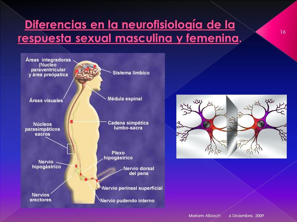 Diferencias en la neurofisiología de la respuesta sexual masculina y femenina.