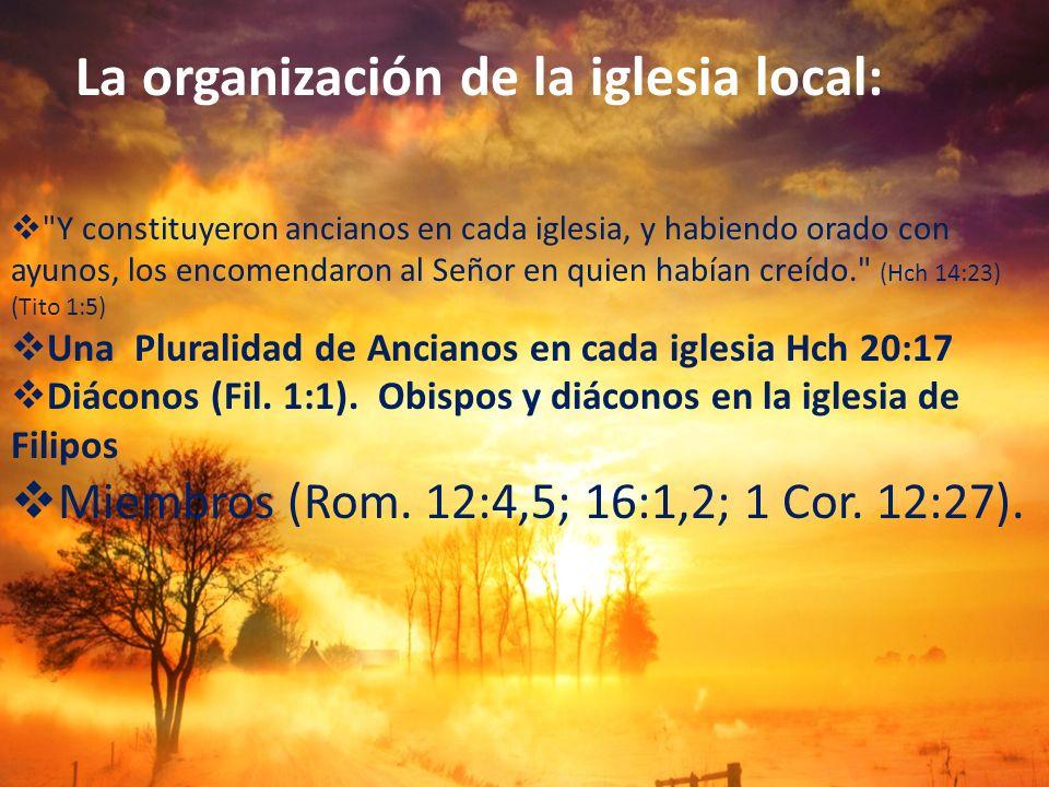 La organización de la iglesia local: