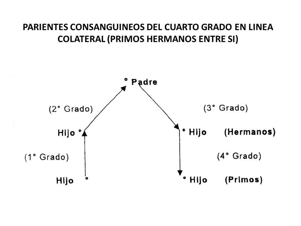 PARIENTES CONSANGUINEOS DEL CUARTO GRADO EN LINEA COLATERAL (PRIMOS HERMANOS ENTRE SI)