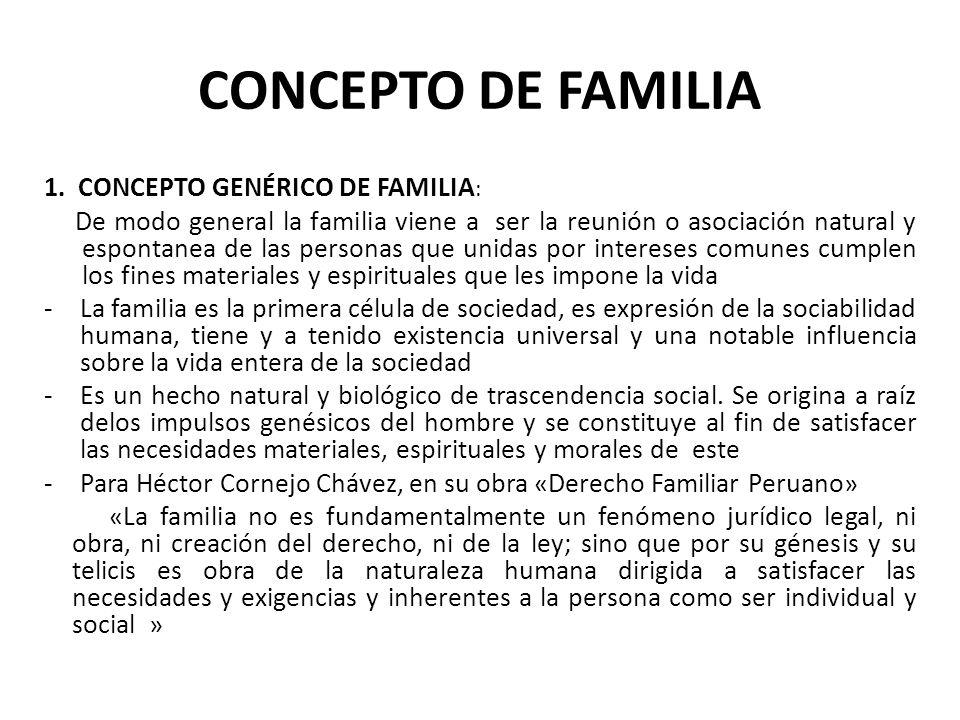 CONCEPTO DE FAMILIA 1. CONCEPTO GENÉRICO DE FAMILIA: