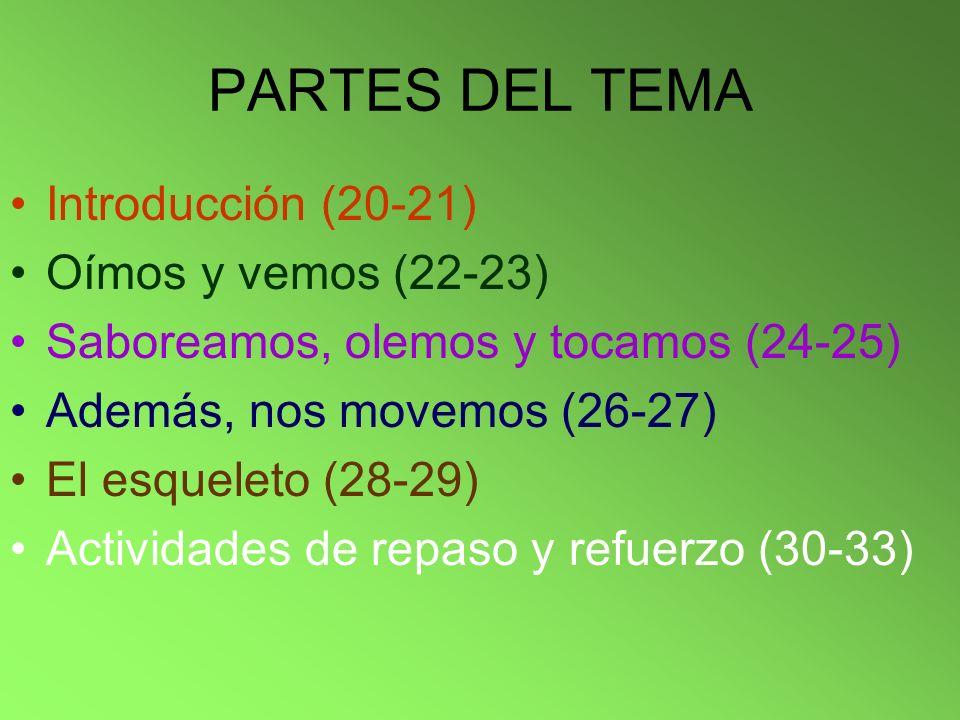 PARTES DEL TEMA Introducción (20-21) Oímos y vemos (22-23)
