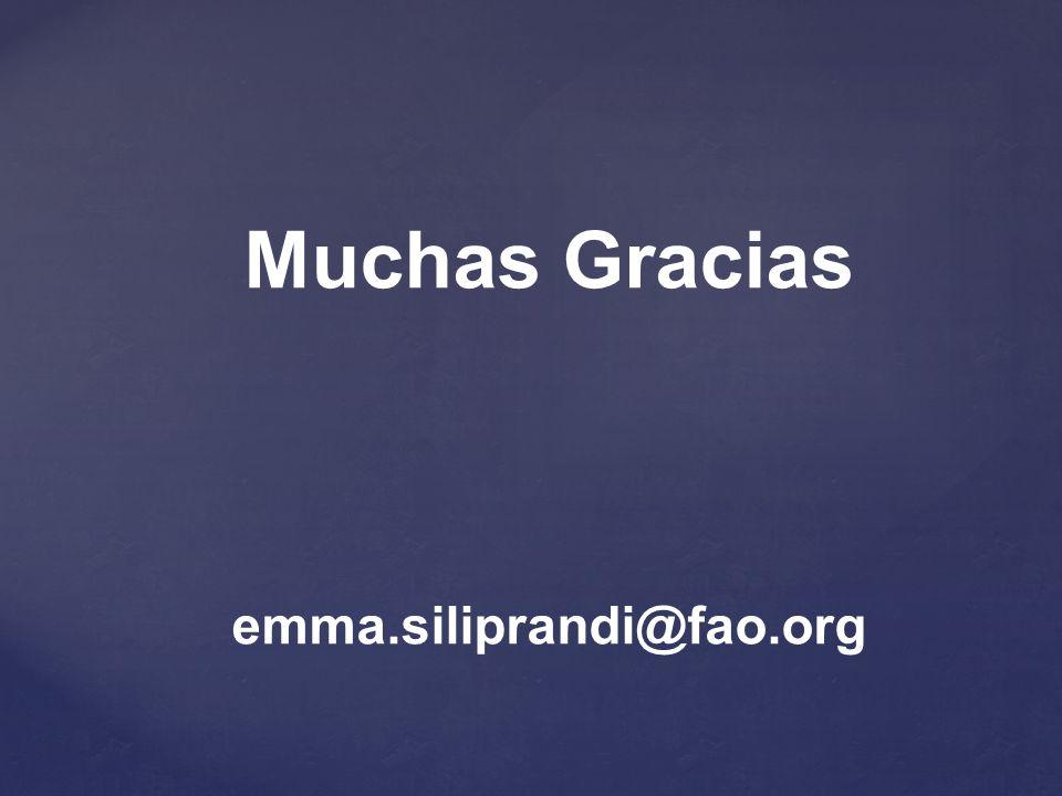 Muchas Gracias emma.siliprandi@fao.org