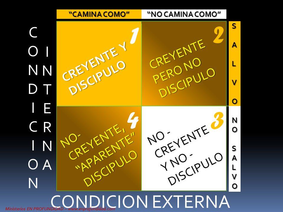 1 2 4 3 CONDICION EXTERNA CONDI C ION IN T ERNA