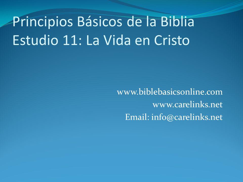 Principios Básicos de la Biblia Estudio 11: La Vida en Cristo
