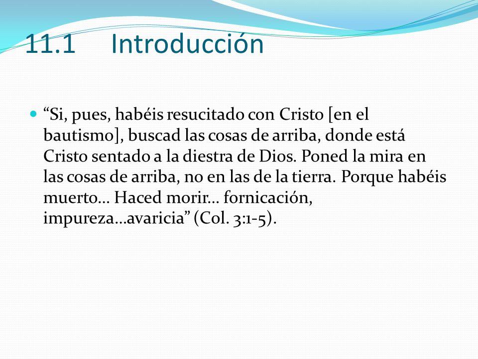 11.1 Introducción