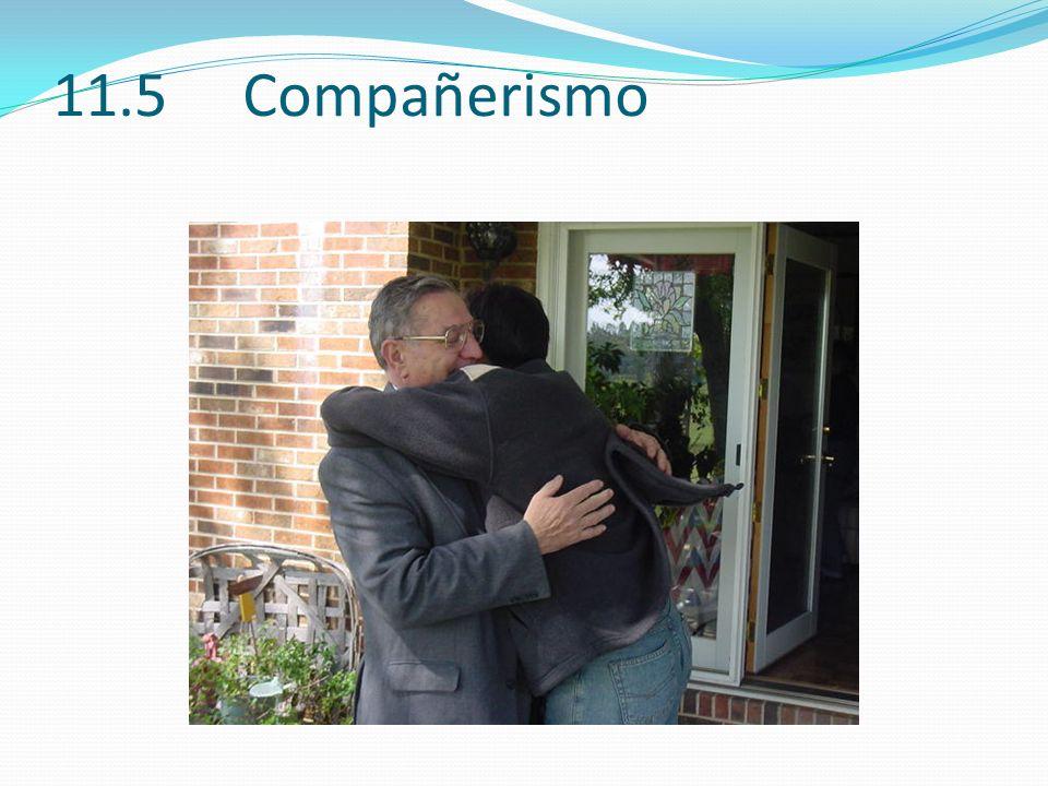 11.5 Compañerismo 15.5 (44)
