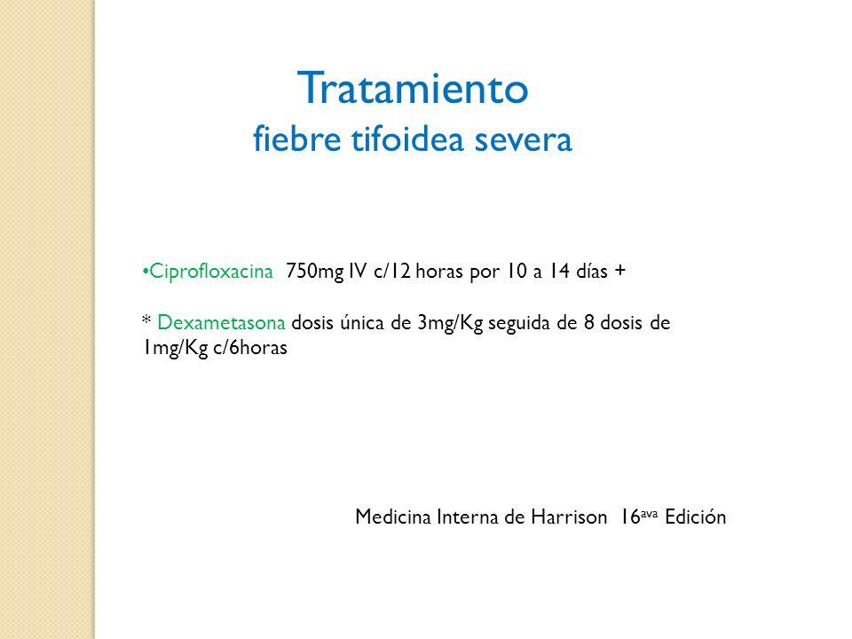 fiebre tifoidea severa