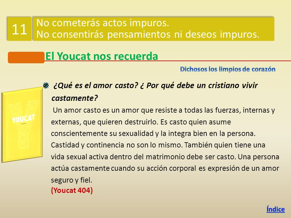 11 El Youcat nos recuerda No cometerás actos impuros.