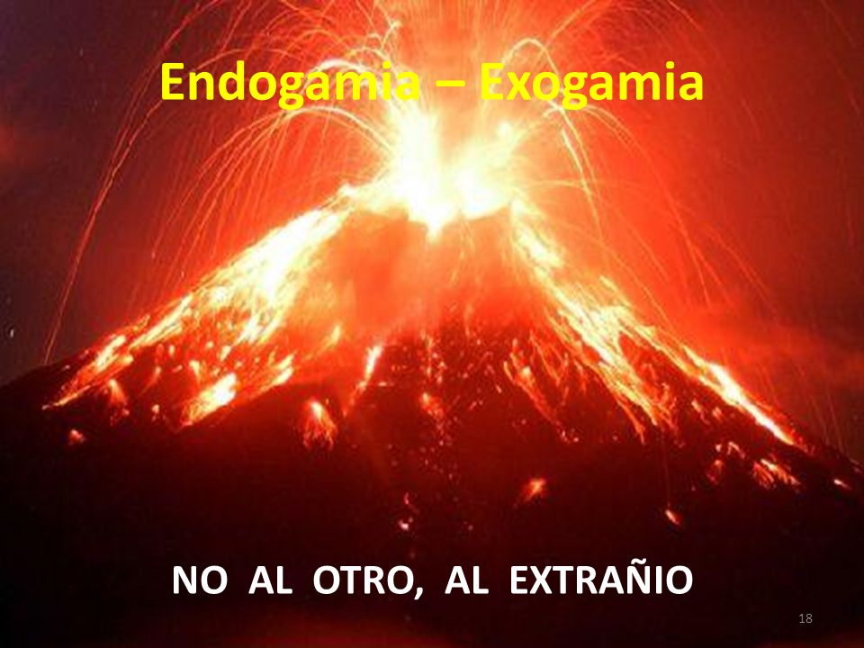 Endogamia – Exogamia NO AL OTRO, AL EXTRAÑIO