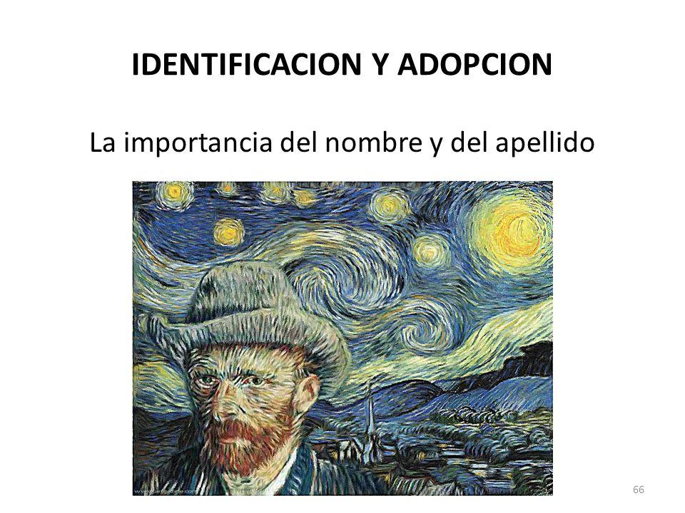 IDENTIFICACION Y ADOPCION