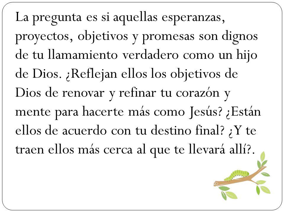 La pregunta es si aquellas esperanzas, proyectos, objetivos y promesas son dignos de tu llamamiento verdadero como un hijo de Dios.