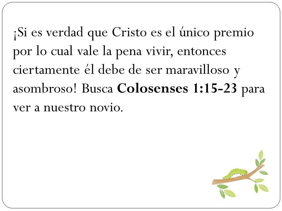 ¡Si es verdad que Cristo es el único premio por lo cual vale la pena vivir, entonces ciertamente él debe de ser maravilloso y asombroso.